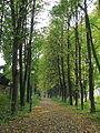 Sukhanovo Park 1.JPG