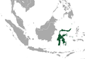 Sulawesi Rousette area.png