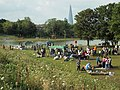 Sunday barbecues by the lake, Burgess Park (geograph 3899024).jpg