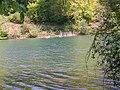 Swans on Fonthill Lake - geograph.org.uk - 792175.jpg
