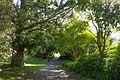 Sydney NSW 2000, Australia - panoramio (340).jpg