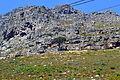 Table Mountain Cape Town 011.jpg