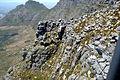 Table Mountain Cape Town 058.jpg
