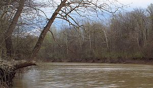 Tallahatchie River - Tallahatchie River south of Minter City