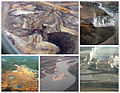Tar-sands-collage.jpg
