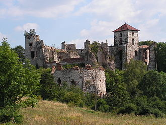 Eagles' Nests Landscape Park - Castle in Teczyn on the Trail of the Eagles' Nests