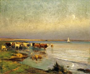 Cows by the Lake Balaton