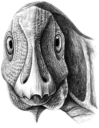 Telmatosaurus - Restoration showing juvenile with jaw deformity