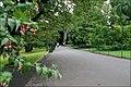 The Botanic Gardens, Belfast (2) - geograph.org.uk - 523397.jpg