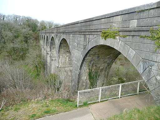 The Derriton Viaduct, Holsworthy - geograph.org.uk - 1852564