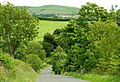 The Glen Road near Katesbridge - geograph.org.uk - 890501.jpg