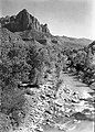 The Watchman and the Virgin River, view south. ; ZION Museum and Archives Image 13320 ; ZION 13320 (a00cfd0956474a0782d3bd567cda0ec2).jpg