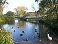 The footbridge and ford with ducks, Glandford - geograph.org.uk - 1051728.jpg