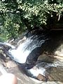 Thusharagiri falls 10.jpg