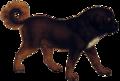Tibetan mastiff (transparent background).png