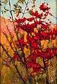 Tom Thomson Soft Maple in Autumn.jpg