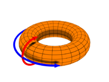 A diagram depicting the poloidal (θ) direction, represented by the red arrow, and the toroidal (ζ or φ) direction, represented by the blue arrow.