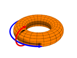 http://upload.wikimedia.org/wikipedia/commons/thumb/d/db/Toroidal_coord.png/250px-Toroidal_coord.png