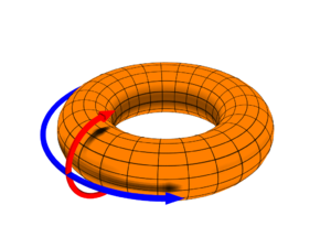 G-module - The torus can be made an abelian group isomorphic to the product of the circle group. This abelian group is a Klein four-group-module, where the group acts by reflection in each of the coordinate directions (here depicted by red and blue arrows intersecting at the identity element).