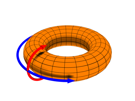 In a top-loading washer, water circulates primarily along the poloidal axis during the wash cycle, as indicated by the red arrow in this illustration of a torus. Toroidal coord.png