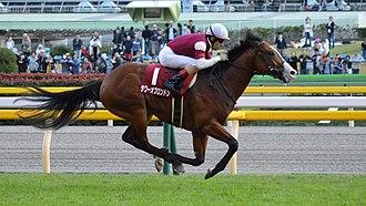 Keio Hai Nisai Stakes - 2017 Keio Hai Nisai Stakes