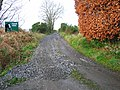 Track to Tillyoch Farm - geograph.org.uk - 1036046.jpg