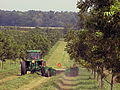 Tractor in alley cropped farm Wisconsin (26311860525).jpg