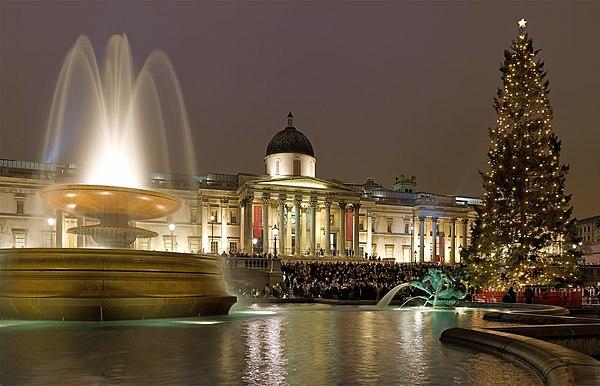 Trafalgar square christmas tree with lights in london england