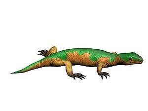 Tuditanus - Life reconstruction of Tuditanus punctulatus