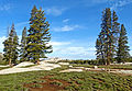 Tuolumne Meadows, Yosemite 5-15 (20821029664).jpg
