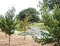 Tushingham - pond near High Ash Farm - geograph.org.uk - 219357.jpg