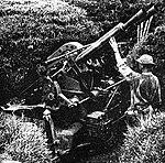 Type Bi 40mm AA Gun.jpg