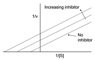 Uncompetitive inhibitor - Lineweaver–Burk plot of uncompetitive enzyme inhibition.