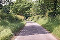 Unnamed lane near Great Witchingham (geograph 5007295).jpg