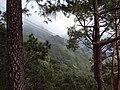 Vaishnodevi trail from Katra 34.JPG