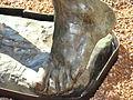 Valladolid Rodin expo 2008 Fiennes 03 ni.JPG