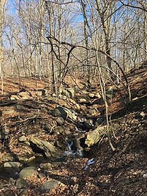 Van Cortlandt Park - Rocky terrain in the park