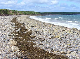 Storm beach - Image: Veantrow Bay, Shapinsay geograph.org.uk 485260