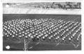 Velodrom, torna - 1928.10.07 (14).tif