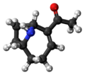 Very Fast Death Factor molecule ball.png