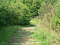 View down the steps, Kirkstall Nature Reserve - geograph.org.uk - 241627.jpg