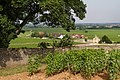 View of La Chappel, Volnay, France.jpg