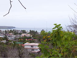 View of Santa Cruz, Galapagos.jpg