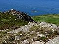 View west from Garn Fawr - geograph.org.uk - 537844.jpg