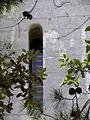 Villeneuve-lès-Maguelone (34) Cathédrale Saint-Pierre-et-Saint-Paul Extérieur 06.JPG