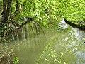 Viosne, parc de Grouchy à Osny.jpg