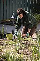 Volunteers help maintain the garden throughout the year. - AA (13991451719).jpg