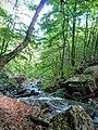Vratza, Bulgaria - panoramio (29).jpg