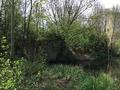 Vue distante des ruines du château d'Happlaincourt (3).png