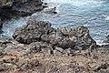 Vulkanische Küste, Südwest-Lanzarote IV.jpg